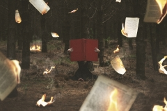 Keren Stanley forest fine art conceptual red book