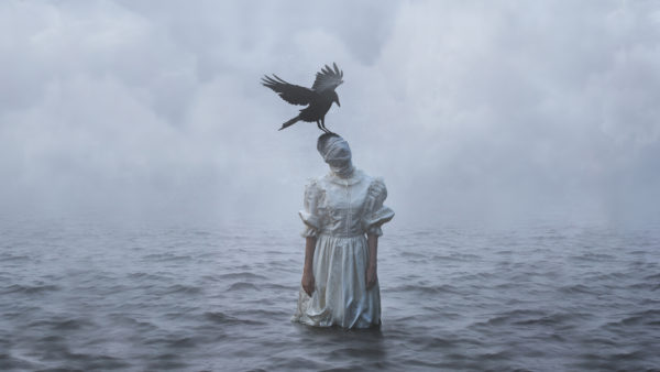Keren Stanley fine art conceptual photography sea crow bird